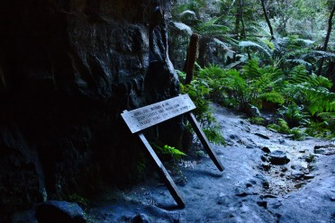 Uprooted Sign