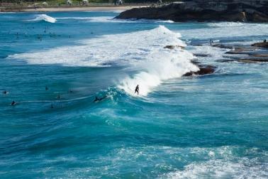 Surfs Up (2016)