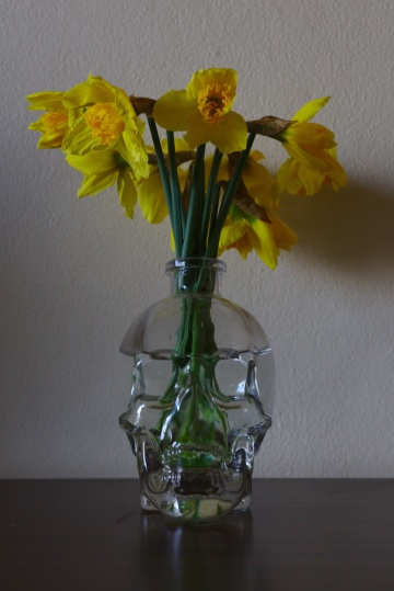 Daffodils in Crystal Head Bottle
